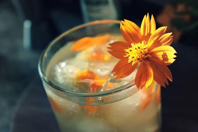 Caipirinha de Flores com Cachaça Artesanal